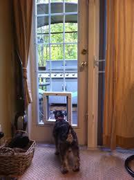 dog door sliding glass patio doggie literarywondrous pet options picture