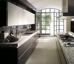 Parallel Kitchen Beautiful White Kitchen Design Idea Kitchen Pixewallscom