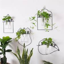 wall hanging green plant flower vase