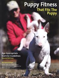 Puppy Culture Exercise Booklet Puppy Fitness That Fits The Puppy Second Edition