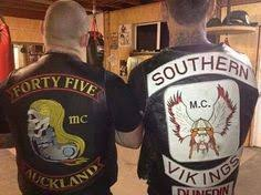 Image result for ]southern vikings