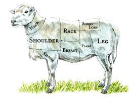 lamb primal cuts. Simple Cuts The Healthy Butcheru0027s Lamb Cut Chart Inside Primal Cuts