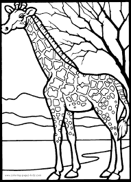 Small Picture Printable 39 African Animal Coloring Pages 3747 Free Coloring