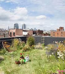 rooftop garden urban garden green roof