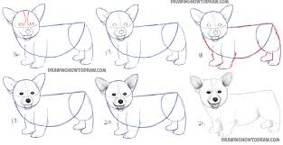 Small Picture How to Draw a Corgi Puppy Easy Step by Step Realistic Drawing