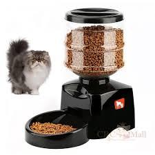 pet feeder 10 10 jpg