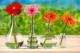 700 flowers vases beautyiful spring home