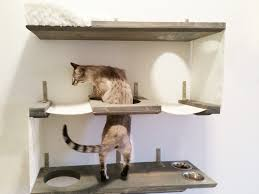 wall mounted cat furniture. Modern Dimensions 1500 X 1125 And Cat Wall Plus Mounted Shelves 136 Exterior In Furniture