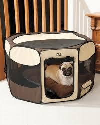 luxury pet furniture. Pet Furniture Luxury B