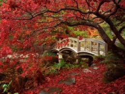 Japanese Garden Japanese Gardens The Way Of Beauty The Way Of Beauty