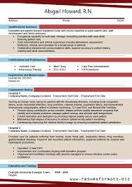 Best It Resume Format New INFORMATION ABOUT RESUME FORMAT 48 Httpwwwresumeformatsbiz