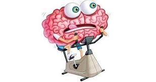 Resultado de imagen para cerebro ejercitar