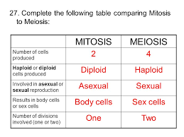 Mitosis Meiosis Differences Chart Worksheet Unit 3 Review Ppt Video Online Download