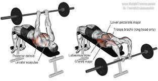 DECLINE BENCH PRESS  Spur On New Muscle Growth  YouTubeDecline Barbell Bench