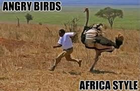 Tuesday Meme-thon - 15 of the funniest pics - 5 Star Durban ... via Relatably.com