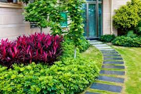 garden ground cover. Entryway With Groundcovers Garden Ground Cover S