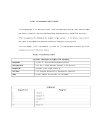 Executive Summary Template Doc Clemsonparade Co