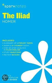 iliad essay questions iliad essays papers essays term papers