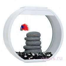 АА-<b>Aquarium Deco</b> O Mini UPG, <b>аквариум</b>, 10л, 335*136*310мм ...