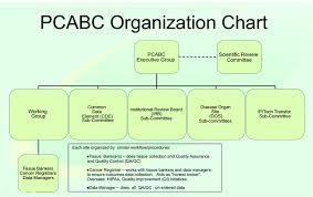 Cde Org Chart Organization Chart The Pcabc Organization Chart Download