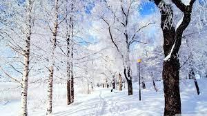 Winter Wonderland Ultra HD Desktop ...