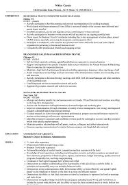 Travel Resume Examples Business Travel Manager Resume Samples Velvet Jobs 6