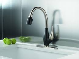 White Kitchen Sink Faucets Brushed Nickel Kitchen Faucet With Sprayer Glacier Bay Lyndhurst
