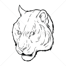 free tiger face vector graphic
