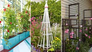 Small Picture Trellis Design Ideas