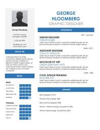 Google Doc Resume A Good Resume Example