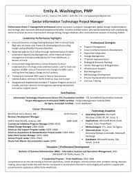 96 Harvard Resume Template Doc Accounting Business Resume