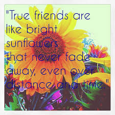 Google Quotes About Friendship hippie quotes about friendship Google Search Quotes and sayings 31