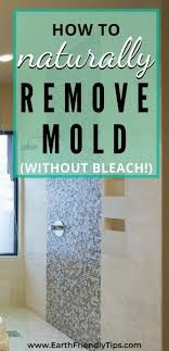 the best natural mold cleaner recipe