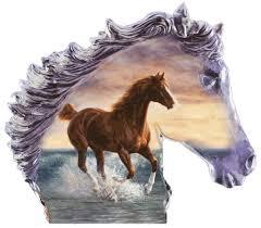 Résultat de recherche d'images pour 'chevaux'