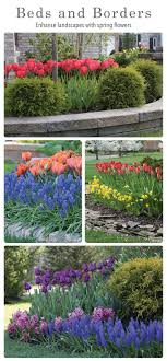 Small Picture Best 25 Spring bulbs ideas on Pinterest Spring flowering bulbs