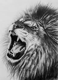 detailed lion drawings in pencil. Fine Drawings Lion Drawing By Dannyhouse On Deviantart  On Detailed Lion Drawings In Pencil N