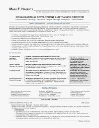 26 Healthcare Resume Professional Template Best Resume Templates