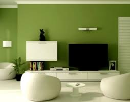 interior design wall paint ideas a room classic green living