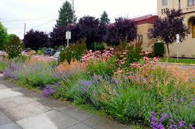 Small Picture Interesting Mediterranean Garden Design About Home Decor Ideas