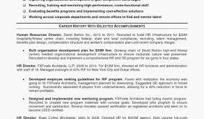 Professional Profile Resume Examples Fresh Professional Profile