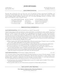 Professional Sales Resume Professional Sales Resume Template Professional Sales Resume