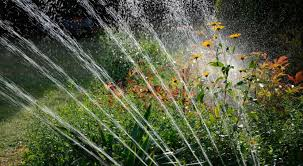 Study: Outdoor watering restrictions only work in hottest and driest weather