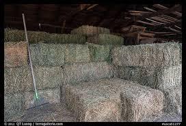 inside barn background. hay in barn, ardenwood farm, fremont. california, usa inside barn background i