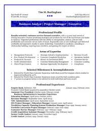Business Analyst Business Analyst Resume Templates Business System