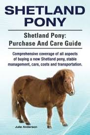 the shetland pony breed is por among children and s here are adorable shetland pony gifts including toys books clothing home decor more