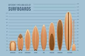 Surfboard Chart Details About Surfboards Size And Type Chart Mural Poster 36x54 Inch