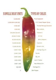 Chilli Hotness Chart Why Is Green Chile Hot The Hatch Chile Store