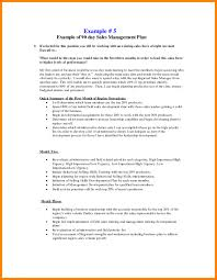 30 60 90 Day Action Plan Template Best Sales Management Templates Account Plan Template 48 48 48 Day