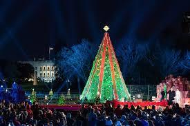 Christmas Lights In Elmira Ny Bathroom Christmas Trees Ranked Washingtonian Unnamed