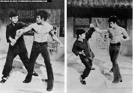 Bruce lee fist of unicorn